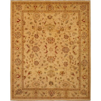 One-of-a-Kind Charlena Hand-Knotted Wool Tan Area Rug