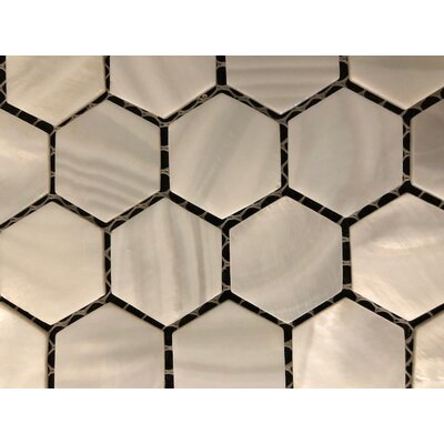 1 x 1 Seashell Mosaic Tile in White