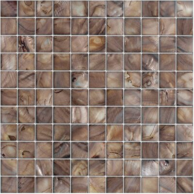 1 x 1 Seashell Tile in Brown