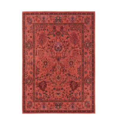 Halford Over-dyed Red�Area Rug