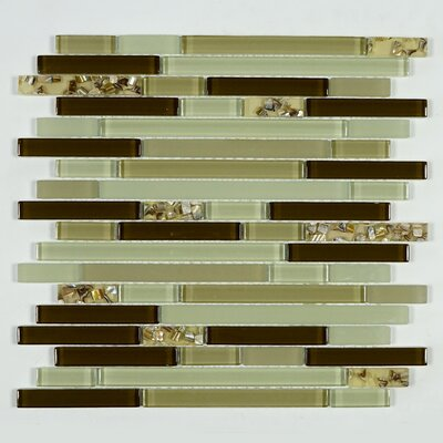 Sea Shell Random Sized Glass Mosaic Tile in Green/Brown