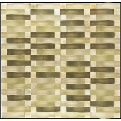 Random Sized 12.2 x 0.32 Glass and Natural Stone Mosaic Tile in Florest