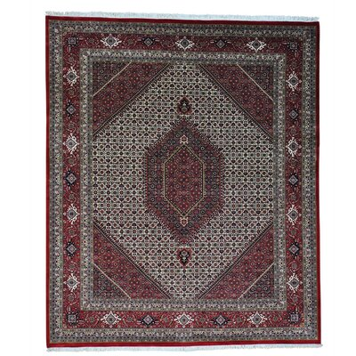 Bidjar Mahi 300 Kpsi Oriental Hand-knotted Silk Ivory Area Rug
