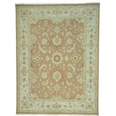 Flat Weave Soumak Oriental Hand-Knotted Brown Area Rug