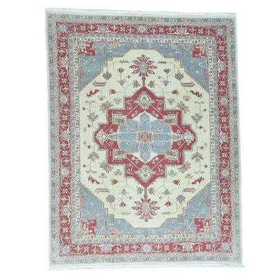 One-of-a-Kind Salvato Sino Oriental Hand-Knotted Area Rug