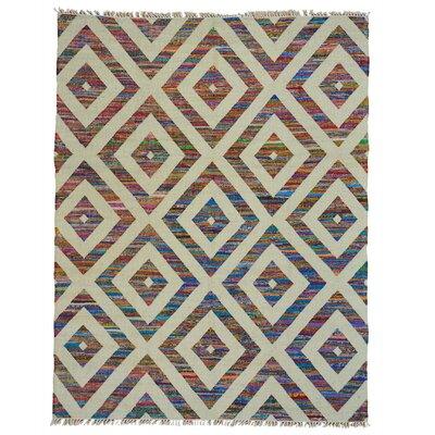 Geometric Duri Kilim Oriental Hand-Knotted Beige/Purple Area Rug