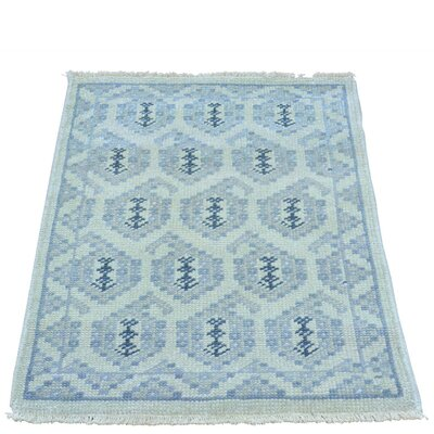 One-of-a-Kind Dessie Knot Paisley Oriental Hand-Knotted Area Rug