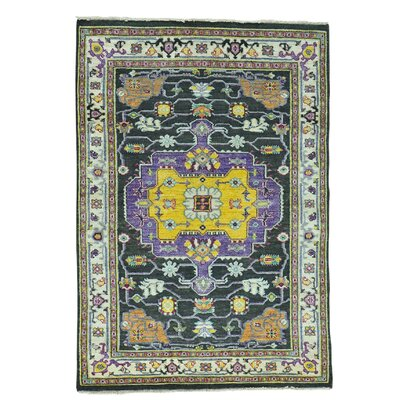 One-of-a-Kind Jude Serapi Oidized High and Low Oriental Hand-Knotted Area Rug