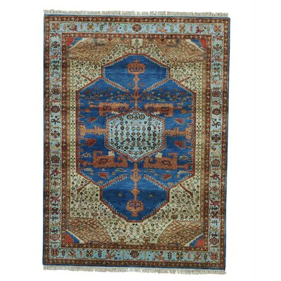 One-of-a-Kind Griego Vegetable Dyes Oriental Hand-Knotted Area Rug