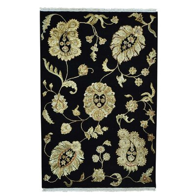 Rajasthan Fine Oriental Hand-Knotted Silk Black Area Rug