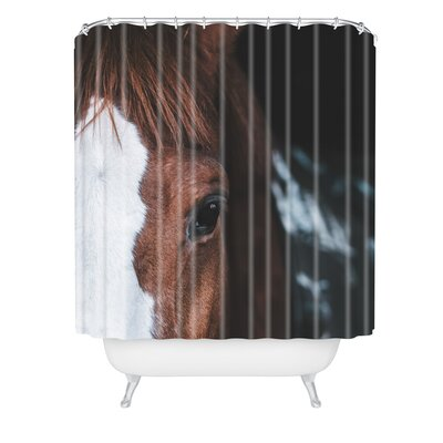 Ingrid Beddoes Horse Cheyenne Shower Curtain