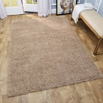 Komar Solid Beige Area Rug Rug Size: Rectangle 67 x 93