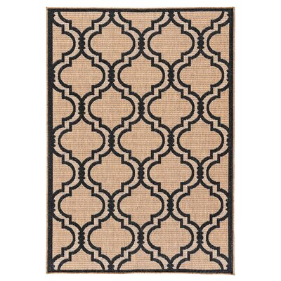 Kinney Reversible Black/Brown Indoor/Outdoor Area Rug Rug Size: Runner 27 x 79