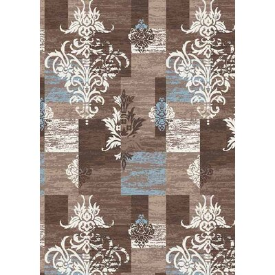 Hinrichs Brown Area Rug Rug Size: Rectangle 5 x 66