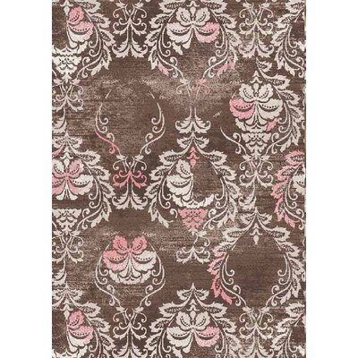 Nordquist Brown Area Rug Rug Size: Rectangle 5 x 66