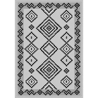 Tubbs Gray Indoor/Outdoor Area Rug Rug Size: Runner 27 x 79