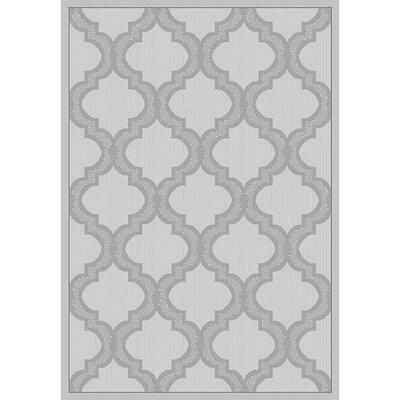 Vinton Gray Indoor/Outdoor Area Rug Rug Size: Runner 27 x 79