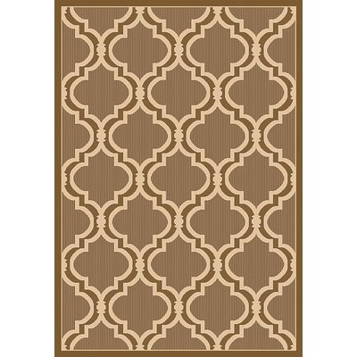 Vinton Brown Indoor/Outdoor Area Rug Rug Size: Rectangle 53 x 76