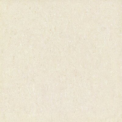 Galaxy Polished 24 x 24 Porcelain Field Tile in Beige