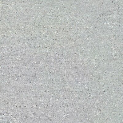 Amazon Polished 24 x 24 Porcelain Field Tile in Gray