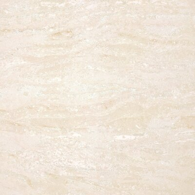 Navona Polished 24 x 24 Porcelain Field Tile in Beige