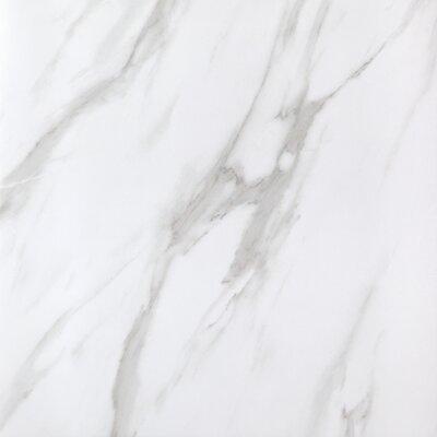 Calacatta Full Polished Glazed 24 x 24 Porcelain Field Tile in White