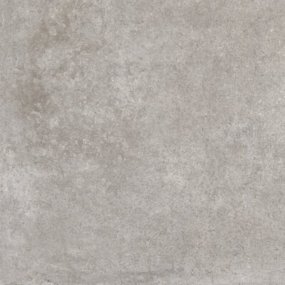 Metropolis Glazed 24 x 24 Porcelain Field Tile in Gray