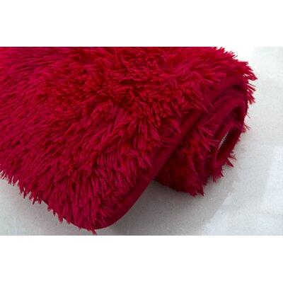 Efimenko 2-Piece Jasper Shaggy Bath Rug Set Color: Red
