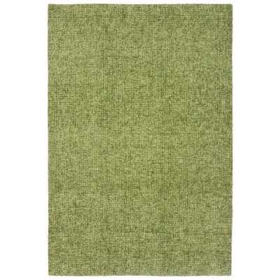 Warford Hand-Tufted Wool Green Area Rug Rug Size: Rectangle 36 x 56