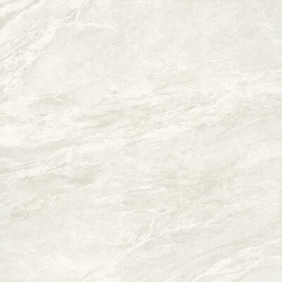 Glazed 24 x 24 Porcelain Field Tile in Beige