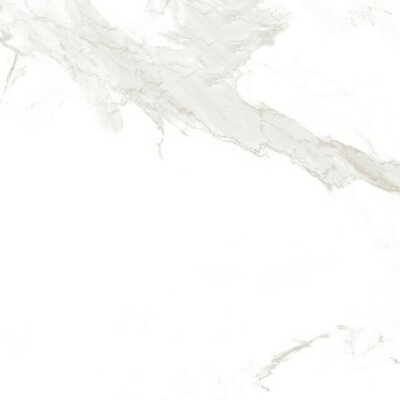 Calacatta Glazed 24 x 24 Porcelain Field Tile in White