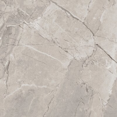 SAMPLE - Passaggio Full Polished Glazed Porcelain Field Tile in Begie