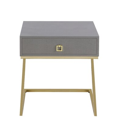 Flemings End Table with Storage Color: Gray
