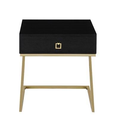 Flemings End Table with Storage Color: Black