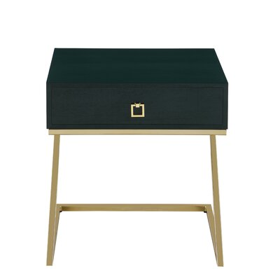 Flemings End Table with Storage Color: Green