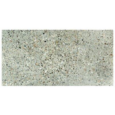 Tampico 11.88 x 23.88 Porcelain Field Tile in Doce