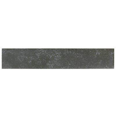 Delos 3.13 x 17.38 Porcelain Field Tile in Black
