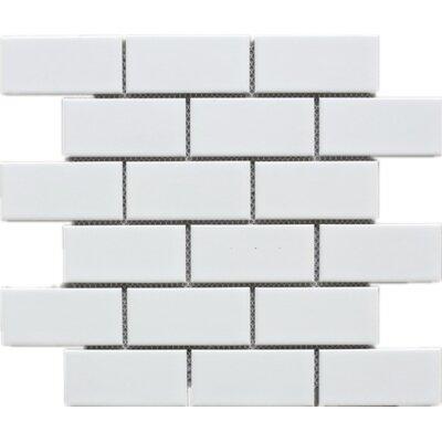 2 x 4 Porcelain Tile in Beige