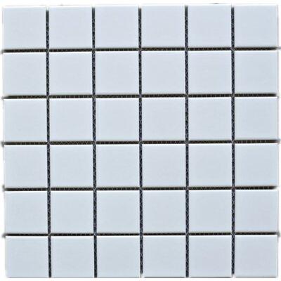 2 x 2 Porcelain Tile in White