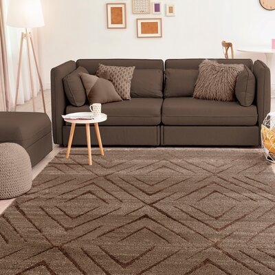 Dirks Accent Brown Area Rug Rug Size: Rectangle 5 x 8