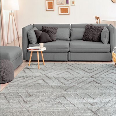 Dirks Accent Gray Area Rug Rug Size: Rectangle 2 x 4