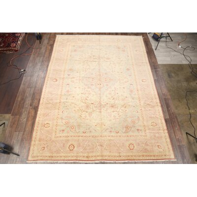 One-of-a-Kind Sauceda Oriental Hand-Knotted Wool Beige/Ivory Indoor/Outdoor Area Rug 8E56DA551D664FD7AFF547DD7F0D1A05