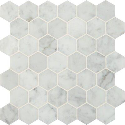 Carrara Hexagon 2 x 2 Marble Mosaic Tile in White