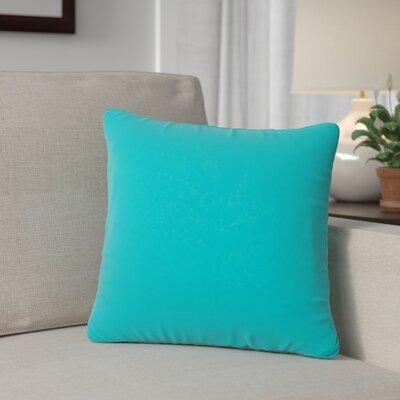 Outdoor Throw Pillow Color: Aruba