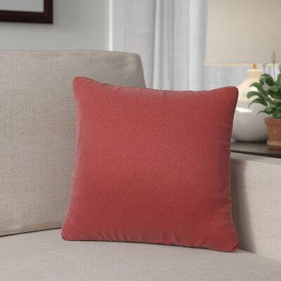 Outdoor Throw Pillow Color: Terracotta