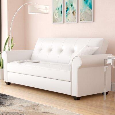 Garry Sleeper Sofa Upholstery: White
