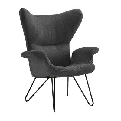 Delmont Armchair Upholstery: Dark Gray