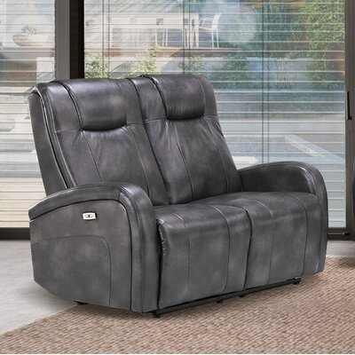 Hiller Dual Reclining Loveseat Upholstery: Steel Gray