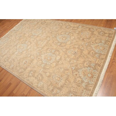 Ptolemy One-of-a-Kind Traditional Oriental Hand-Knotted Wool Beige Area Rug