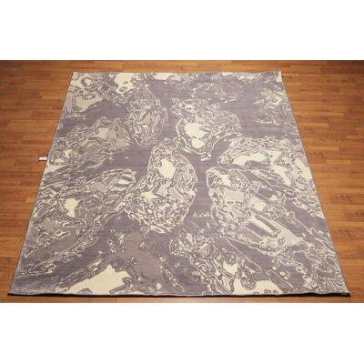 Lemus Modern Oriental Wool Gray Area Rug